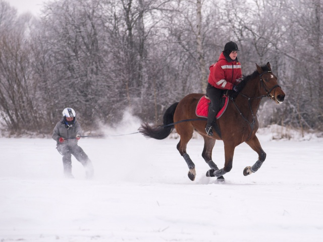 24jan2016 Drostalas skijo